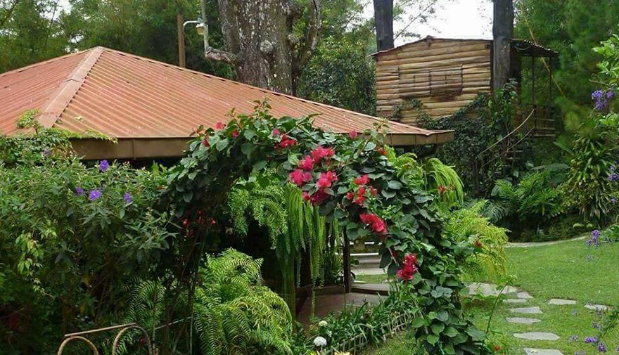 Revista de vacaciones el salvador jardines m gicos para for Amor en el jardin
